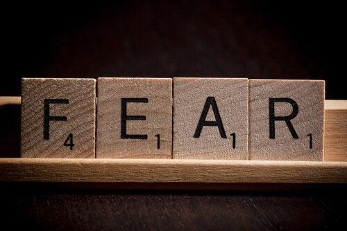Konfrontera rädslan