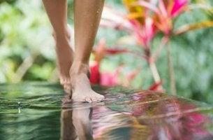 Meditera medan du promenerar