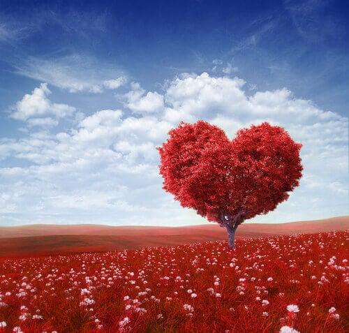 Hjärtformat träd