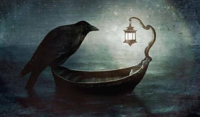 Kråka på båt