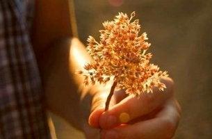 Vänlighet utan handling