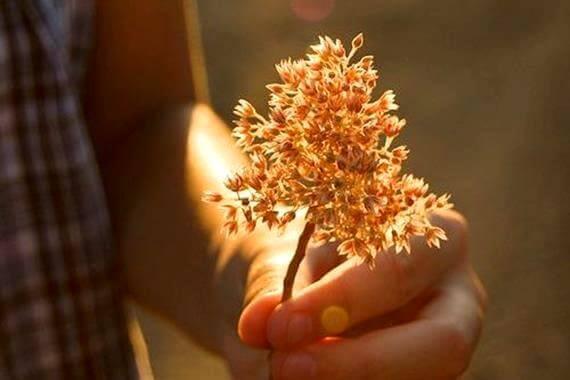 Vänlighet utan handling är värdelöst
