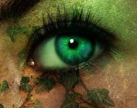 Pupillernas mysterium