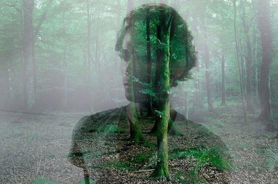 Man och skog