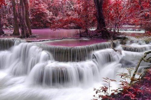 Våra inre floder