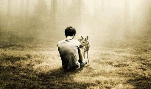 Ensam man med rådjur