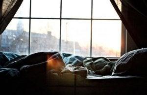 Person i sängen