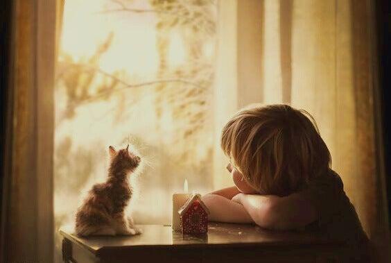 Pojke med kattunge