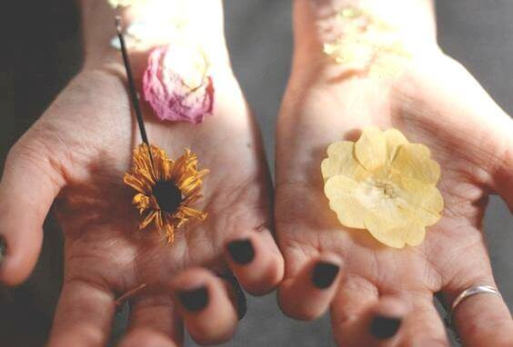 Händer med blommor