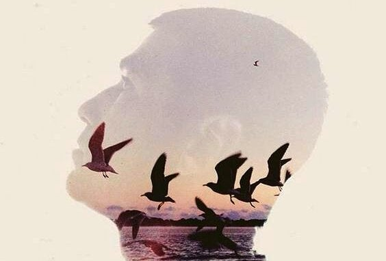 Man med fåglar