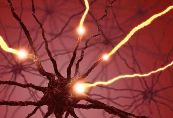 Hur njutningshormonet serotonin påverkar kroppen