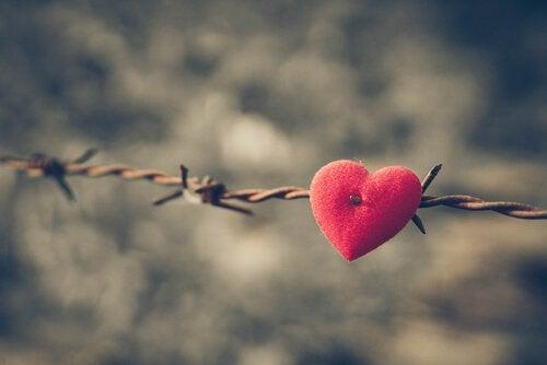 Hjärta på taggtråd