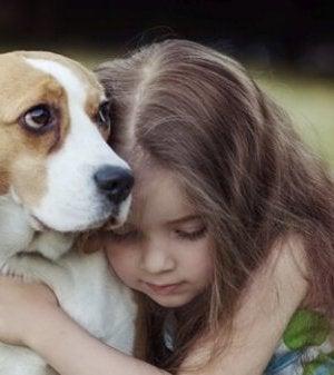 En hunds empati kan förbättra ditt sinnestillstånd