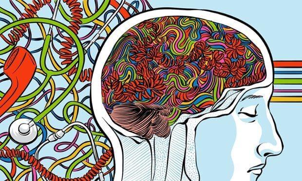 Vagusnerven och hjärnan