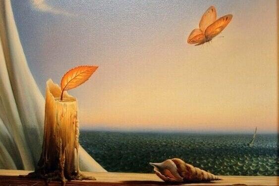 Fjäril och ljus