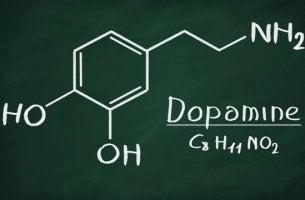 Vad gör dopamin