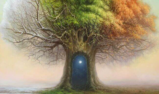 Dörr i träd