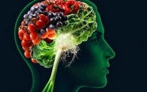 Hjärna med livsmedel