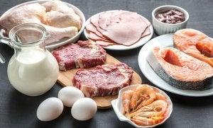 Kött och mjölkprodukter