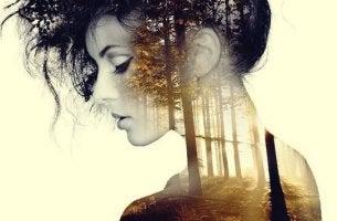 Tystnad och ensamhet kan vara bra för dig