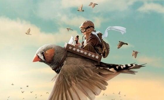 Pojke som rider på fågel
