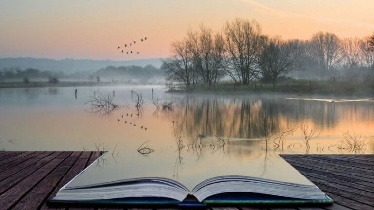 Bok vid sjö