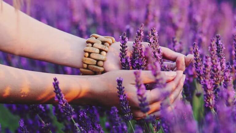 Händer bland blommor
