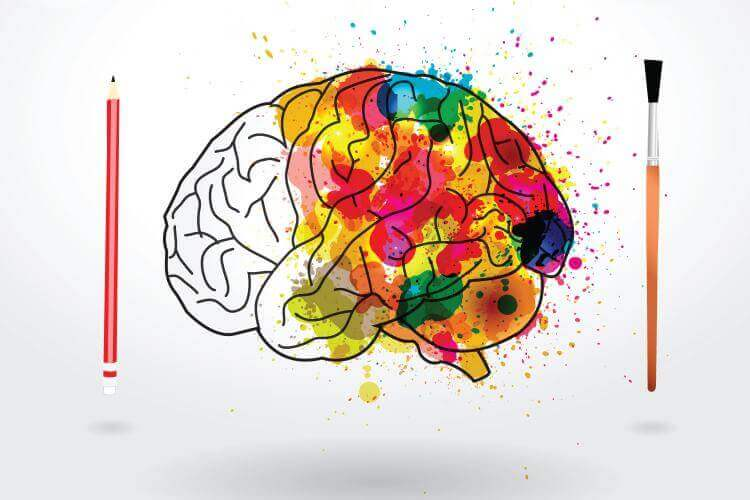 Hjärna med färger