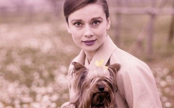 Hepburn med hund
