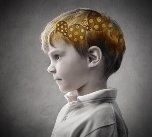 Hjärna hos pojke