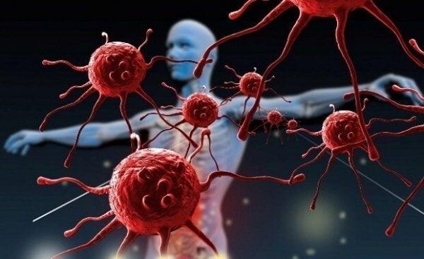 Hur kan du stärka ditt immunförsvar?