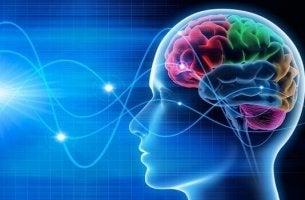 Vad gör hjärnvågor?