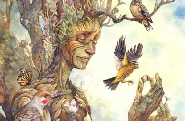 Vad träd kan lära dig om att finna lycka