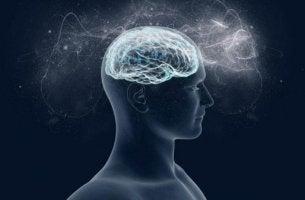 Varför hjärnan älskar magnesium