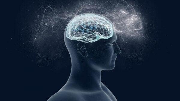 Hjärnan älskar magnesium – vi berättar varför