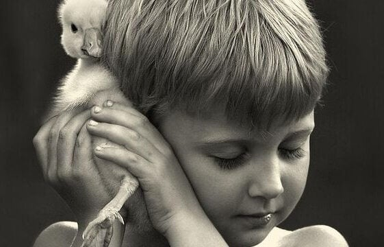 Pojke med fågel