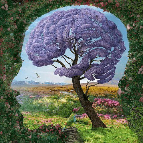 Det limbiska systemet: vad är det och hur fungerar det?