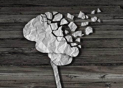 Hjärna i bitar