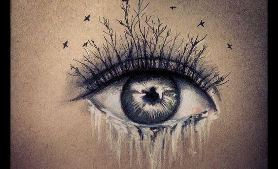 Gråtande öga med fåglar
