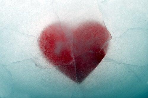 Hjärta bland is