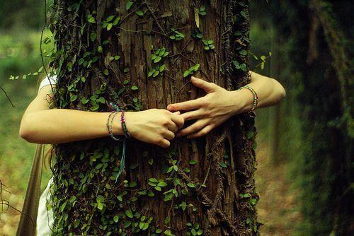Kvinna som kramar träd