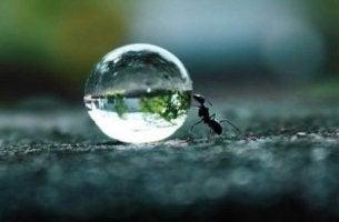 Uthållighet är drömmarnas livsmedel för att du ska kunna uppnå det du vill i livet