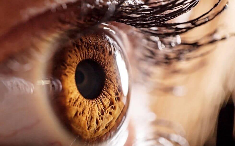 Ögon och pupiller avslöjar attraktion