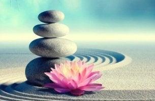Budord från zen
