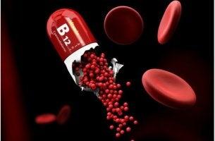 Konsekvenser av vitamin B12-brist