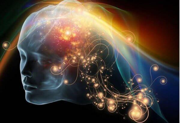 Näring påverkar hjärnan