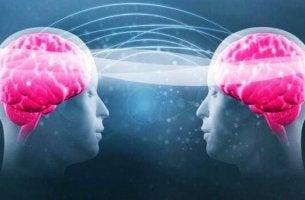 Tryptofan och serotonin
