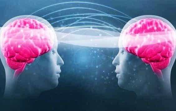 Tryptofan och serotonin: ditt välmående beror på dem