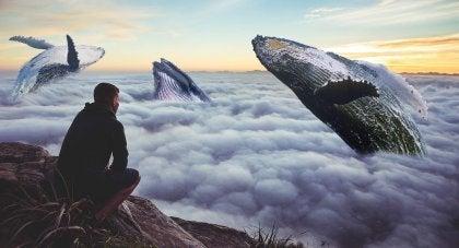 Valar bland molnen