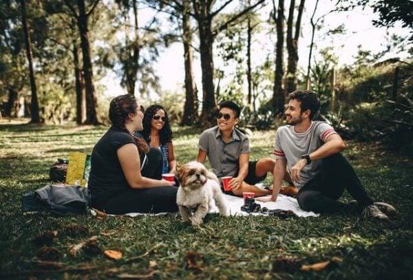 Vänner i skogen